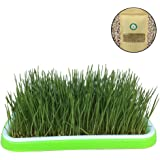 Organic Cat Grass Kit with Grid Tray, 200g Wheat Grass Seeds Planter Soil, Natural Hairball Control and Remedy, Grow…