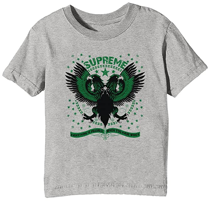 Erido Supreme Niños Unisexo Niño Niña Camiseta Cuello Redondo Gris Manga Corta Todos Los Tamaños Kids Unisex Boys Girls T-Shirt Grey: Amazon.es: Ropa y ...