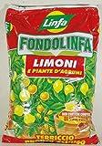 fondolinfa citrons terreau prêt à l'utilisation pour citrons et plantes d'agrumes Lot de 10Lt