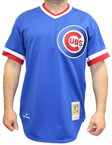 huge discount 2e25b 6e652 Amazon.com : Mitchell & Ness Ryne Sandberg Chicago Cubs ...