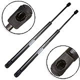 ECCPP 2pcs Front Hood Lift Supports Struts Rods Shocks for 2002 2003 2004 2005 Hyundai Sonata