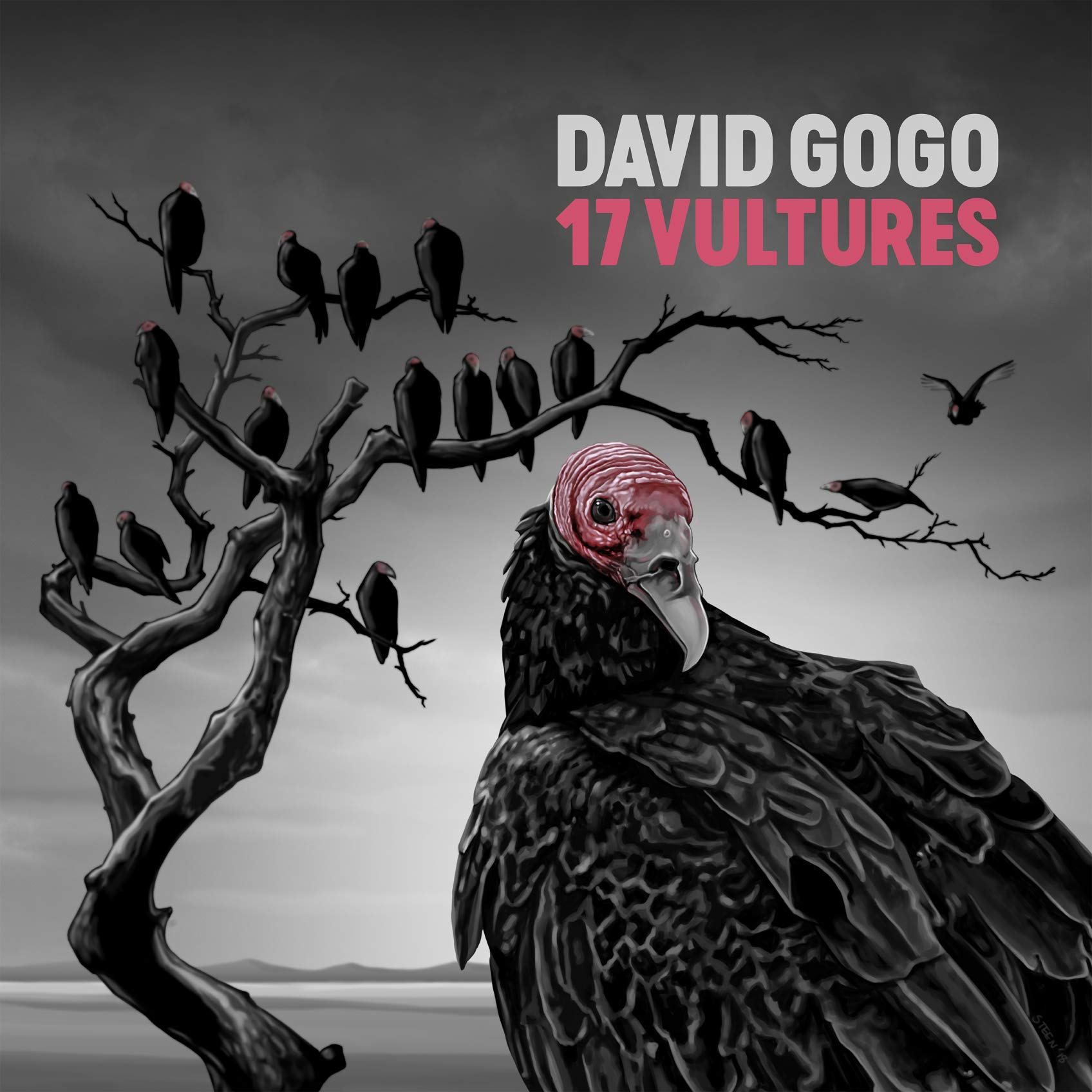 CD : David Gogo - 17 Vultures (Canada - Import)
