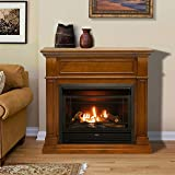 Duluth Forge Dual Fuel Ventless Fireplace-26,000
