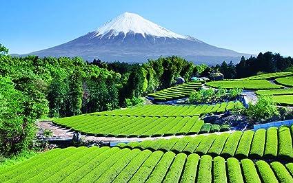 Buy Avikalp Exclusive Awi1854 Fuji Nature Beauty Japan Full
