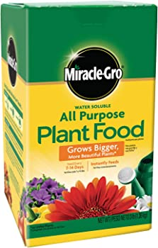 Miracle-Gro 1000283 Fertilizer All Purpose Plant Food