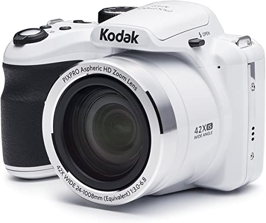 Kodak Elektronik