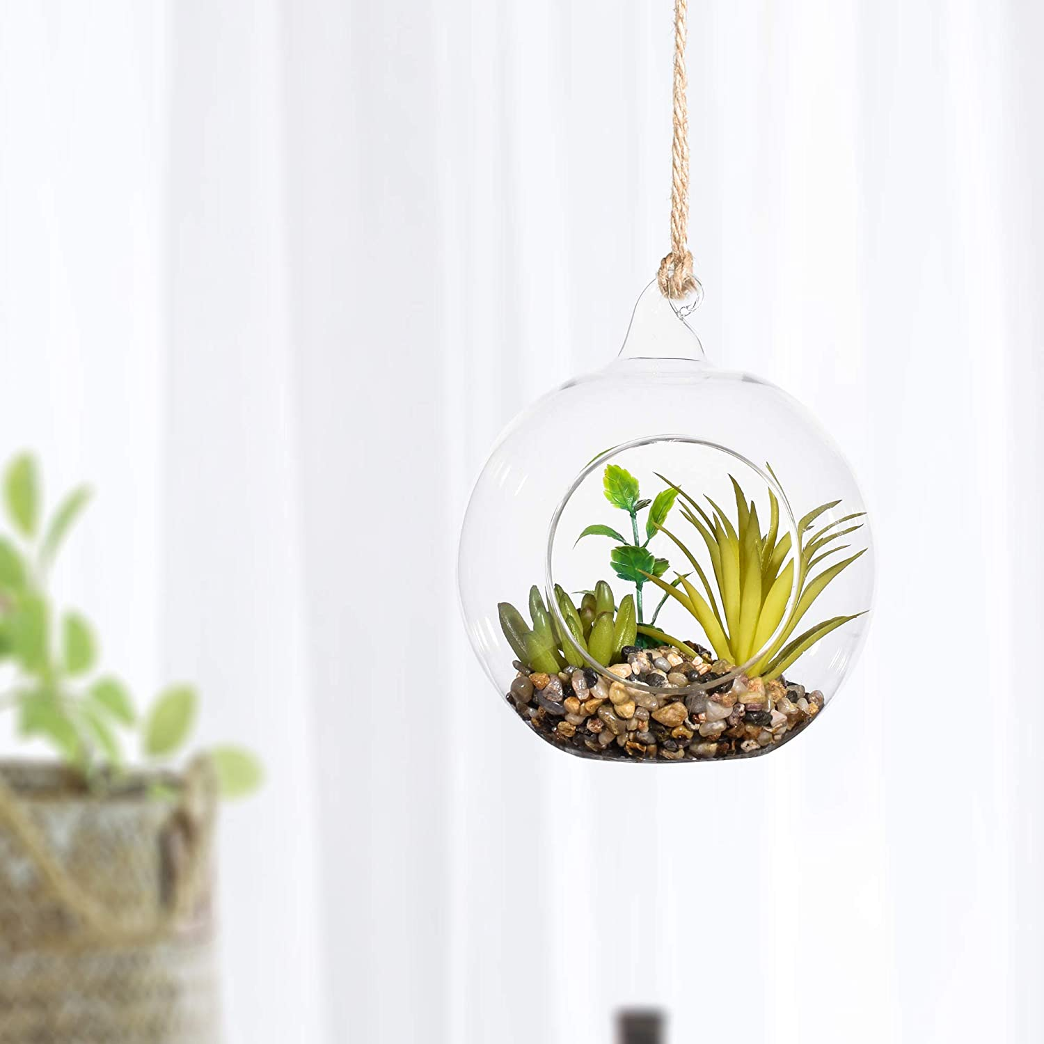 Ecosides 4.75 Artificial Succulents in Hanging Orb Terrarium with Pull Ring /& Flat Bottom,With Rope , pull ring C 4.75,16cm
