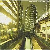 パラダイム(初回限定盤)(DVD付)