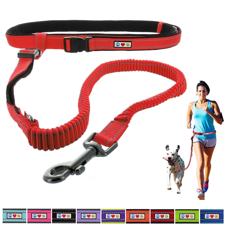 Pawtitas Laisse d'animal de compagnie pour chien mains libres, antichoc, rembourrée et réfléchissante pour le dressage en plein air et la course à pied Couleur Noir 735255514766