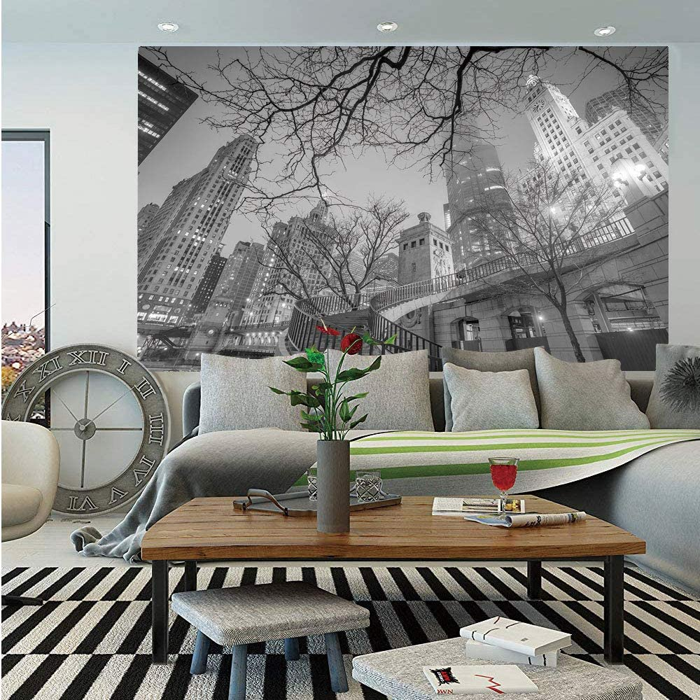 Amazon Com Sosung Black And White Decorations Wall Mural Chicago
