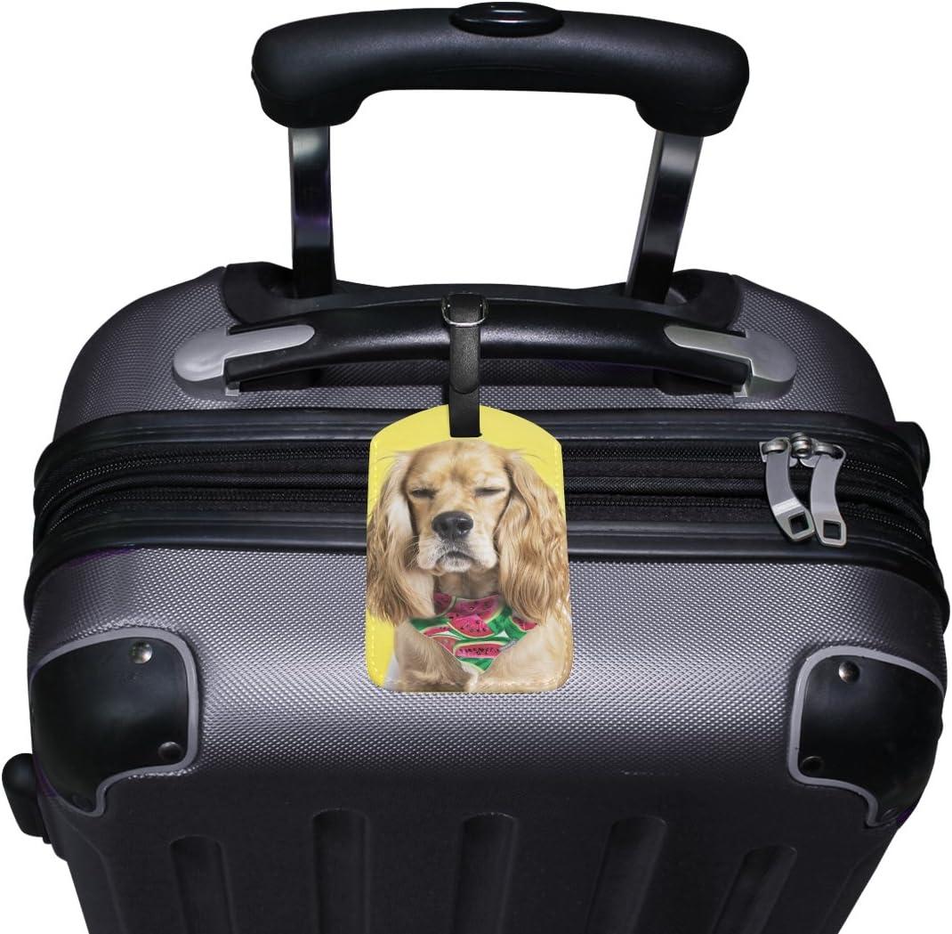 Chen Miranda Spaniel Luggage Tag PU Leather Travel Suitcase Label ID Tag Baggage claim tag for Trolley case Kids Bag 1 Piece