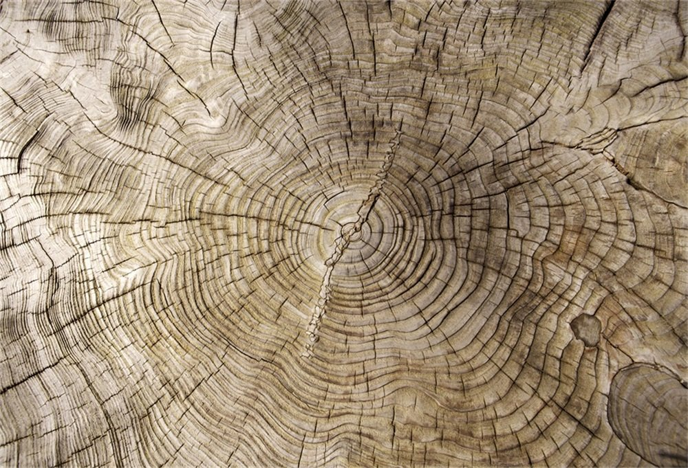 LFEEY 7x5フィート 抽象的 木製 成長リング 写真 背景 木目 木目 一年中 リング パターン 背景 イベント用 写真スタジオ小道具   B07FQCGC6Q