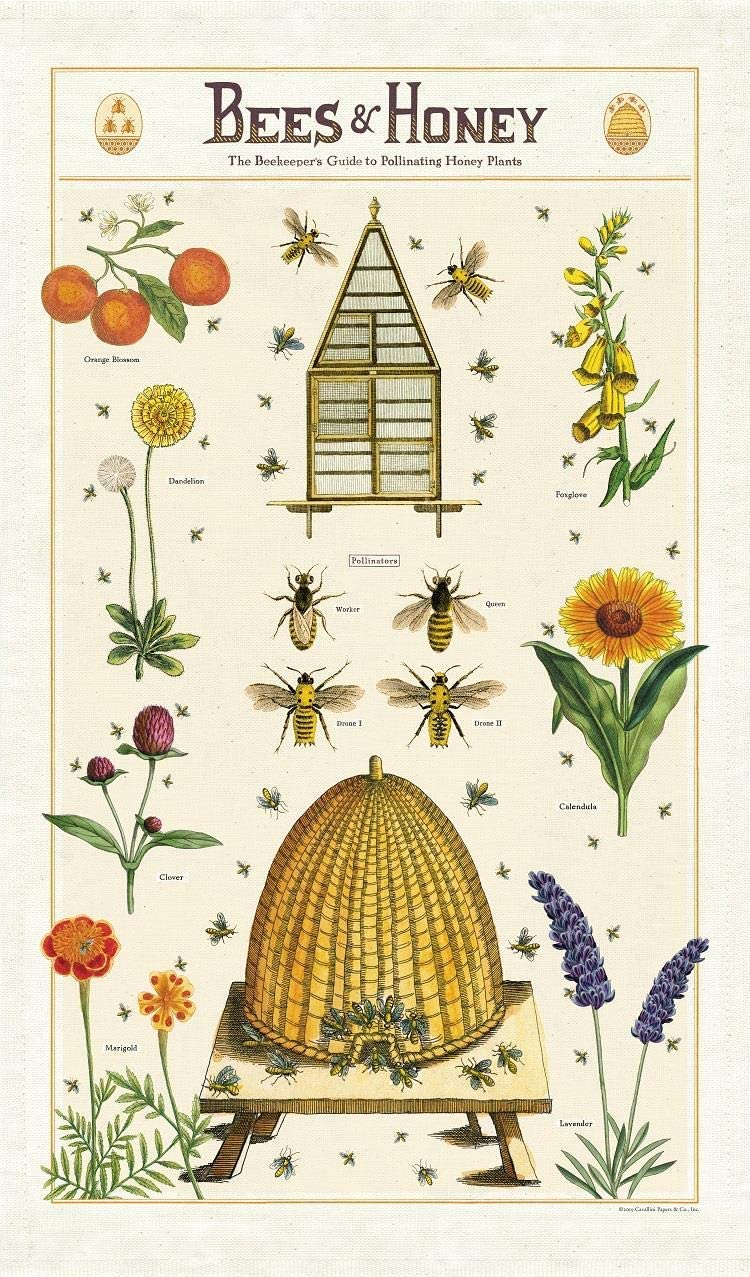 Cavallini Papers Co Bees Honey Tea Towel Multi Home Kitchen Amazon Com