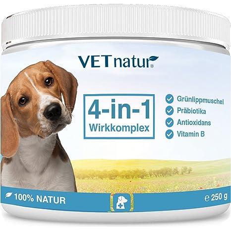 VETnatur 4in1 Grünlippmuschel-Pulver für Hunde mit Wirkungssteigerung durch Antioxidans + Präbiotika + Vitamin B + Zink/Eisen