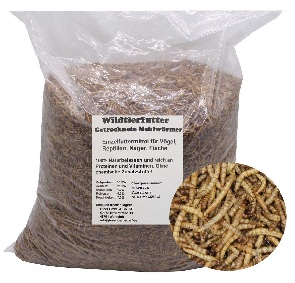 Mehlw/ürmer 5 Kg Premium Snack f/ür V/ögel Fische Reptilien Igel Schildkr/öten