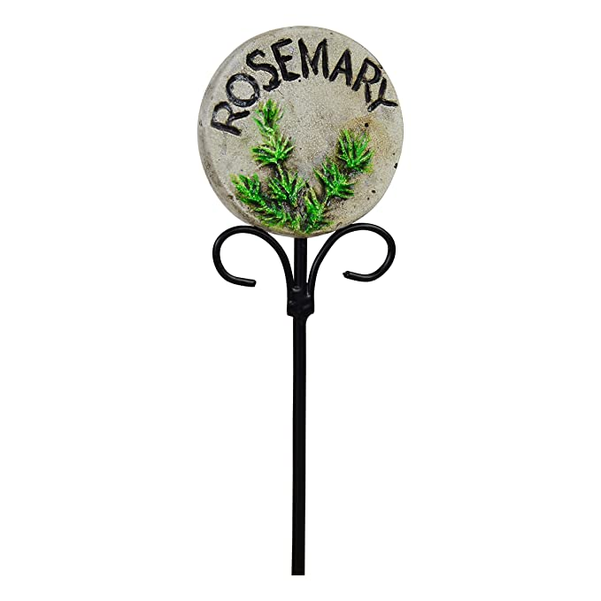 Handmade Basil Beautifully Hand Painted with Colorful Images Durable Decorative Luka Creations Herb Markers Waterproof and Long Lasting Plant Tags for Garden Gifts Garden Label