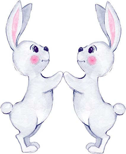 Amazon Com Cute White Bunny Rabbit Couple Best Friends Cartoon
