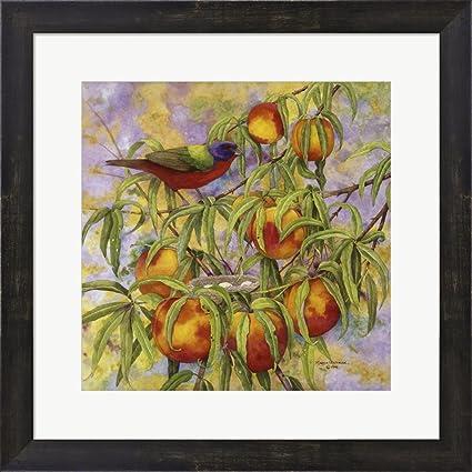 bb7b2346b6b Amazon.com  Painted Bunting   Peaches by Marcia Matcham Framed Art ...