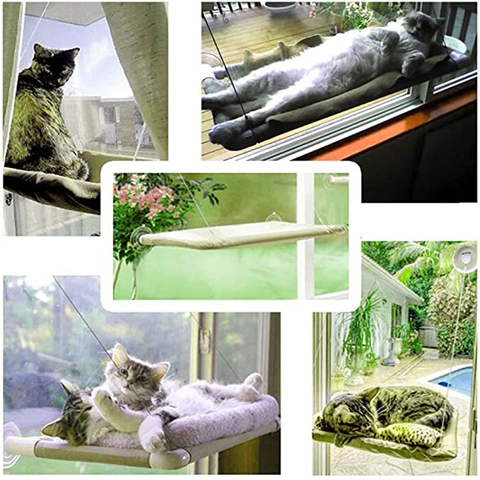Amazon.com : Cat Kitty Basking Window Hammock Perch Cushion Bed Hanging Shelf Seat Mounted : Pet Supplies