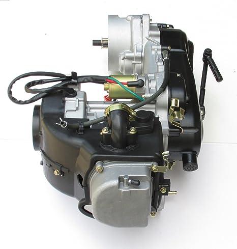 Marca nueva GY6 50 cc 4 tiempos motor de corto caso 1p39qmb Scooter paz Jonway ciclomotor: Amazon.es: Coche y moto