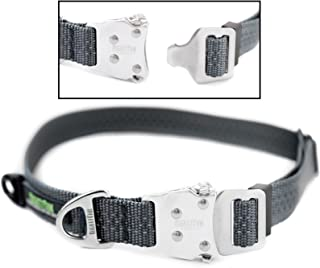 Mighty Paw Metal Buckle Dog Collar, All Metal Hardware, Lightweight Collar, Reflective Stitching, Strong, Durable