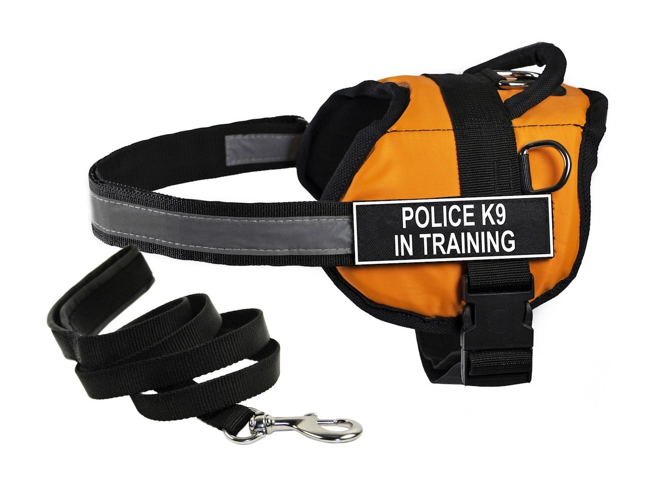 Dean & Tyler's DT Works orange POLICE K9 IN TRAINING Harness, Medium, with 6 ft Padded Puppy Leash.