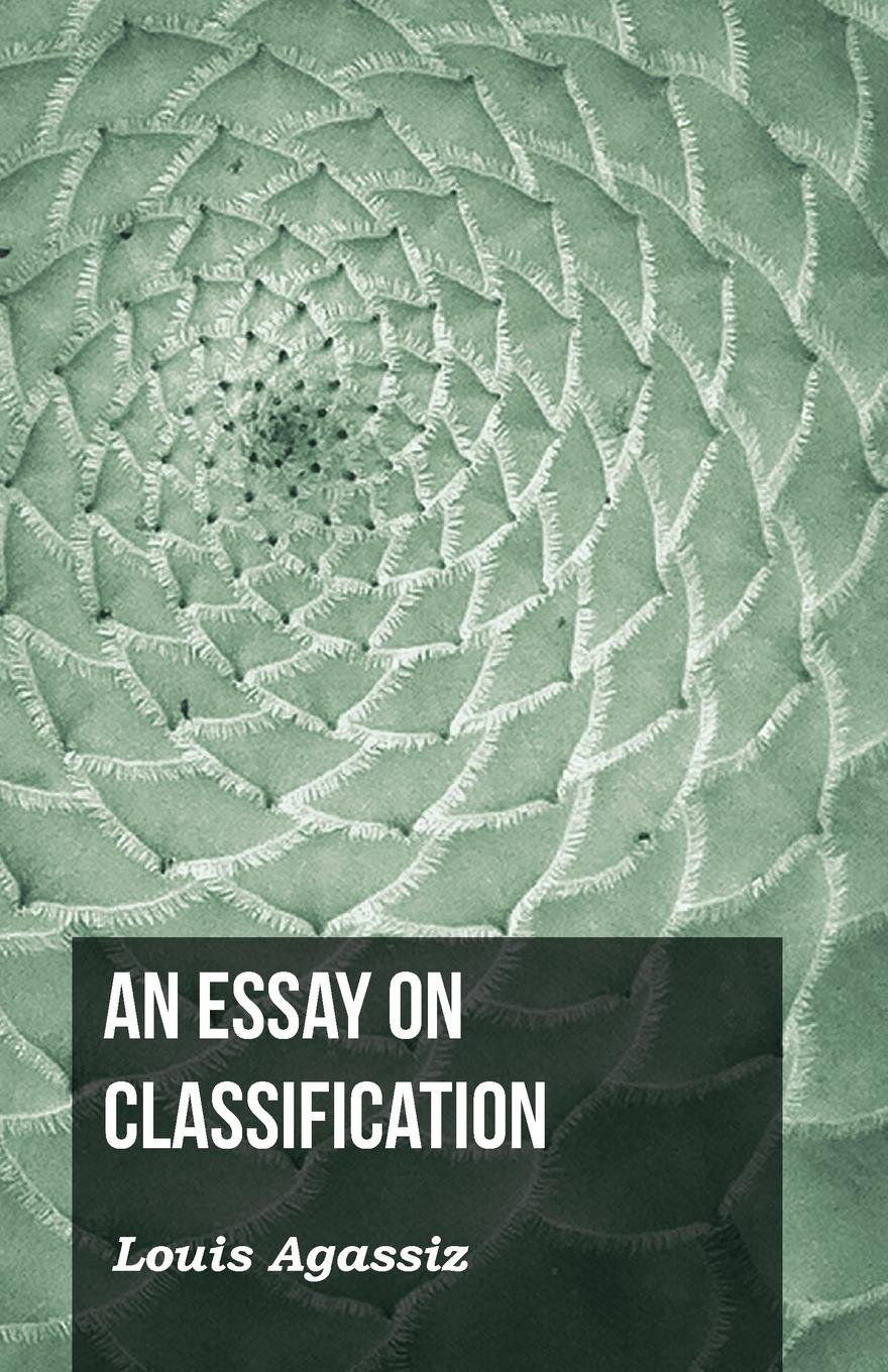 An Essay on Classification