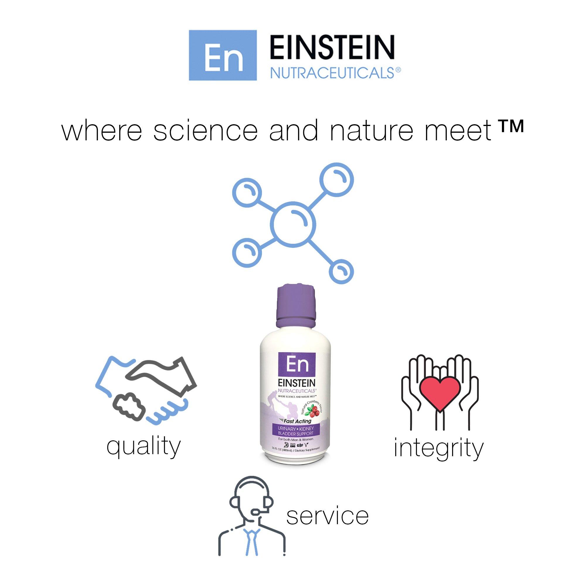 Einstein Nutraceuticals Urinary, Kidney, Bladder Support Medicine, Cranberry Flavor Liquid, 16 fl. oz. Bottle by Einstein Nutraceuticals