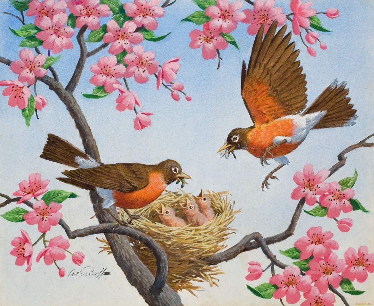 Berkin Arts Arthur Saron Srnoff Giclee Lienzo Impresión Pintura póster Reproducción (Robin Europeo): Amazon.es: Hogar