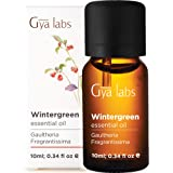Gya Labs Wintergreen Essential Oil - for Ache Free Body, Easy Breathing & Perfect Smiles 10ml - 100% Pure Natural Therapeutic