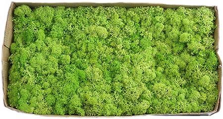 1, Material: realmente flores, el contenido de agua es 30% -60% (dependiendo de la humedad en la hab