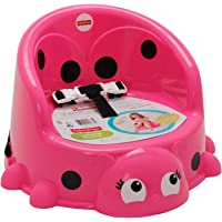 Fisher-Price Ladybug Booster