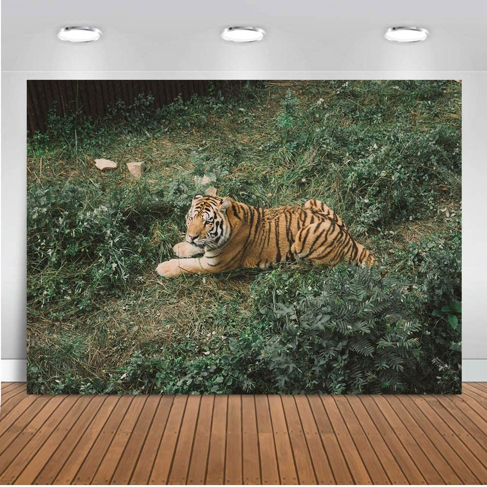LELEZ 7X5FT Wild Wolf Background Forest Jungle Safari Animal Theme Party Decoration Backdrop for Photography Vinyl Studio Booth Props GEEV373