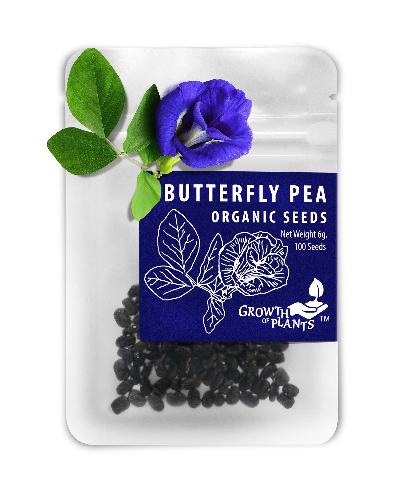 Growth of Plants Butterfly Pea 100 Dried Seeds (100 Seeds)