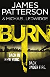 Burn: (Michael Bennett 7). A sizzling New York crime thriller