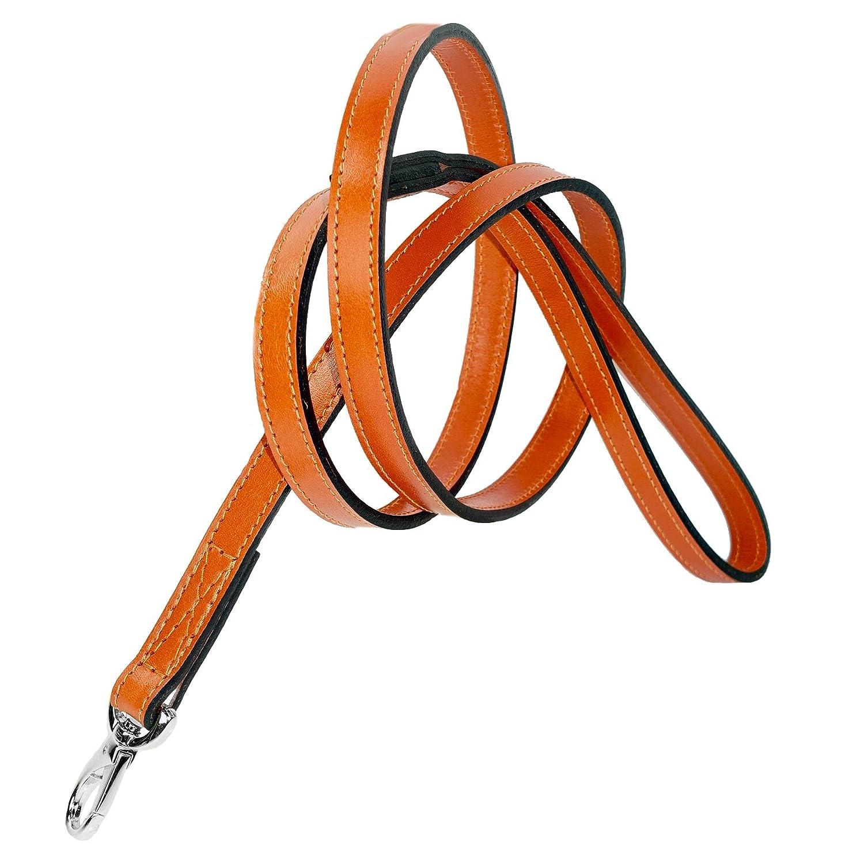 orange 1 2-Inch orange 1 2-Inch Hartman & pink After Eight Dog Lead, 1 2-Inch, orange