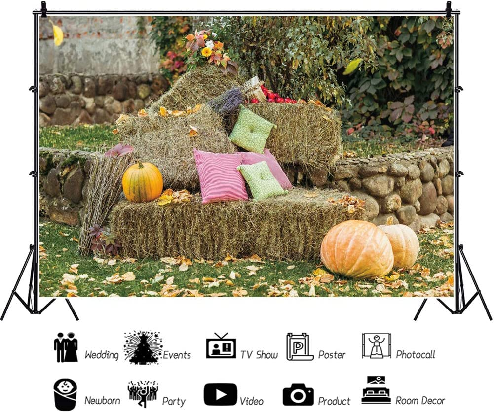 OERJU 10x8ft Happy Harvest Backdrop Pumpkins Hay Stack Colorful Back Cushion Lawn Photography Background Thanks Giving Day Baby Shower Birthday Party Decor Boys Girls Adults Portrait Photo Props