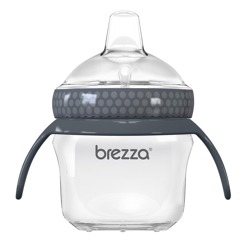Baby Brezza Baby Brezza Transition Cup, Clear/Grey BZB00199