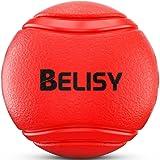 Hundeball von BELISY für besonders hohen Spielspaß – Hundespielzeug aus Naturgummi – robustes Kau-Spielzeug – Hundespielball für große & kleine Hunde – auch für Welpen geeignet - Rot - verschiedene Größen