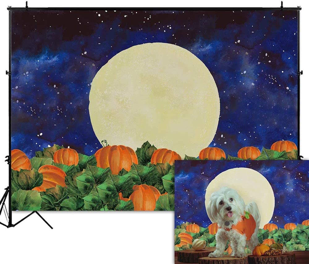 Funnytree 7x5FT Thanksgiving Pumpkin Filed Halloween Photography Backdrop for Kids Birthday Party Banner Fall Starry Sky Night Moon Background Photo Booth