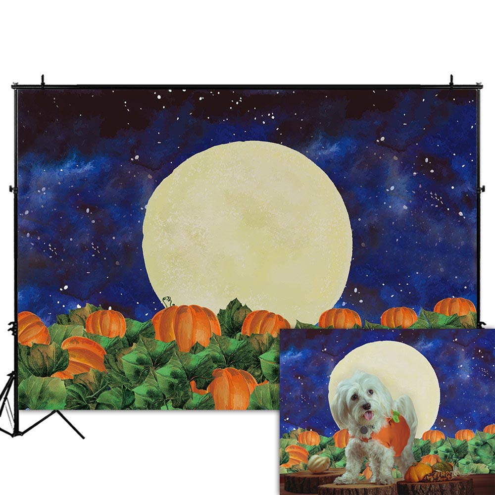 Funnytree 7x5FT Halloween Pumpkin Filed Night Moon Photography Backdrop for Kids Birthday Party Banner Starry Sky Background Photo Booth by Funnytree