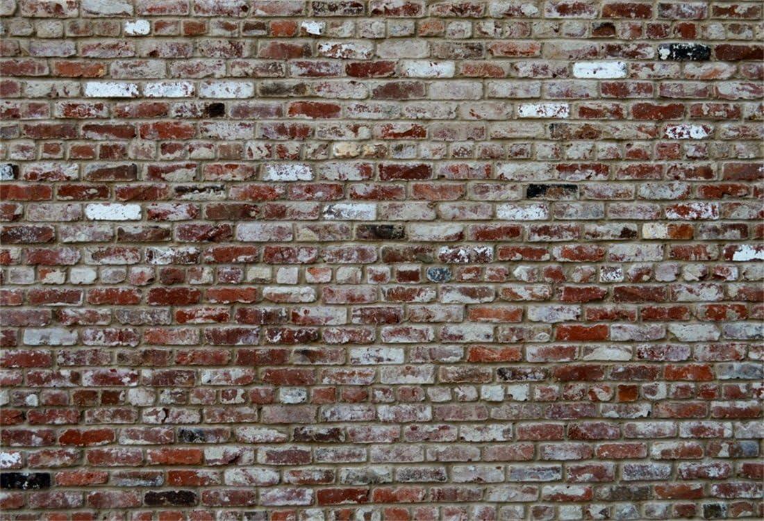 YongFoto 3x2m Vinyl Toile de Fond Vieux Sale Brique Mur Tann/é Texture Fond D/écors Studio Photo Portrait Enfant Video Fete Mariage Photobooth Photographie Accesorios