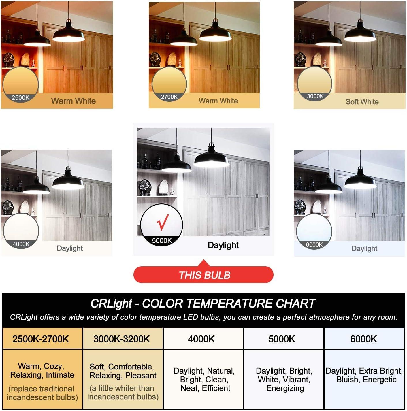 CRLight 5000K 6W Dimmable LED Edison Bulb Daylight White Glow 6 Pack Vintage Style ST64 Clear Glass LED Filament Light Bulbs 70W Equivalent 700 Lumens E26 Medium Base