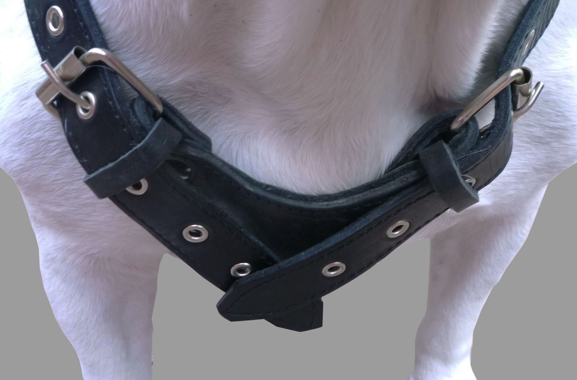 8lbs Black Genuine Leather Weighted Pulling Dog Harness for Exercise and Training. Fits 33''-39'' Chest, by Dogs My Love (Image #3)