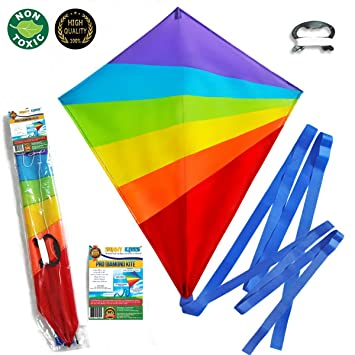 Large Kite (Sale Out: Last 100 Kites) Flying Kites Kit for Kids with