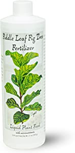Fiddle Leaf Fig Tree Fertilizer (16 oz) Ficus Plant Food   Improves Leaves and Branches   Potted Indoor Trees/House Plants Treatment by Aquatic Arts