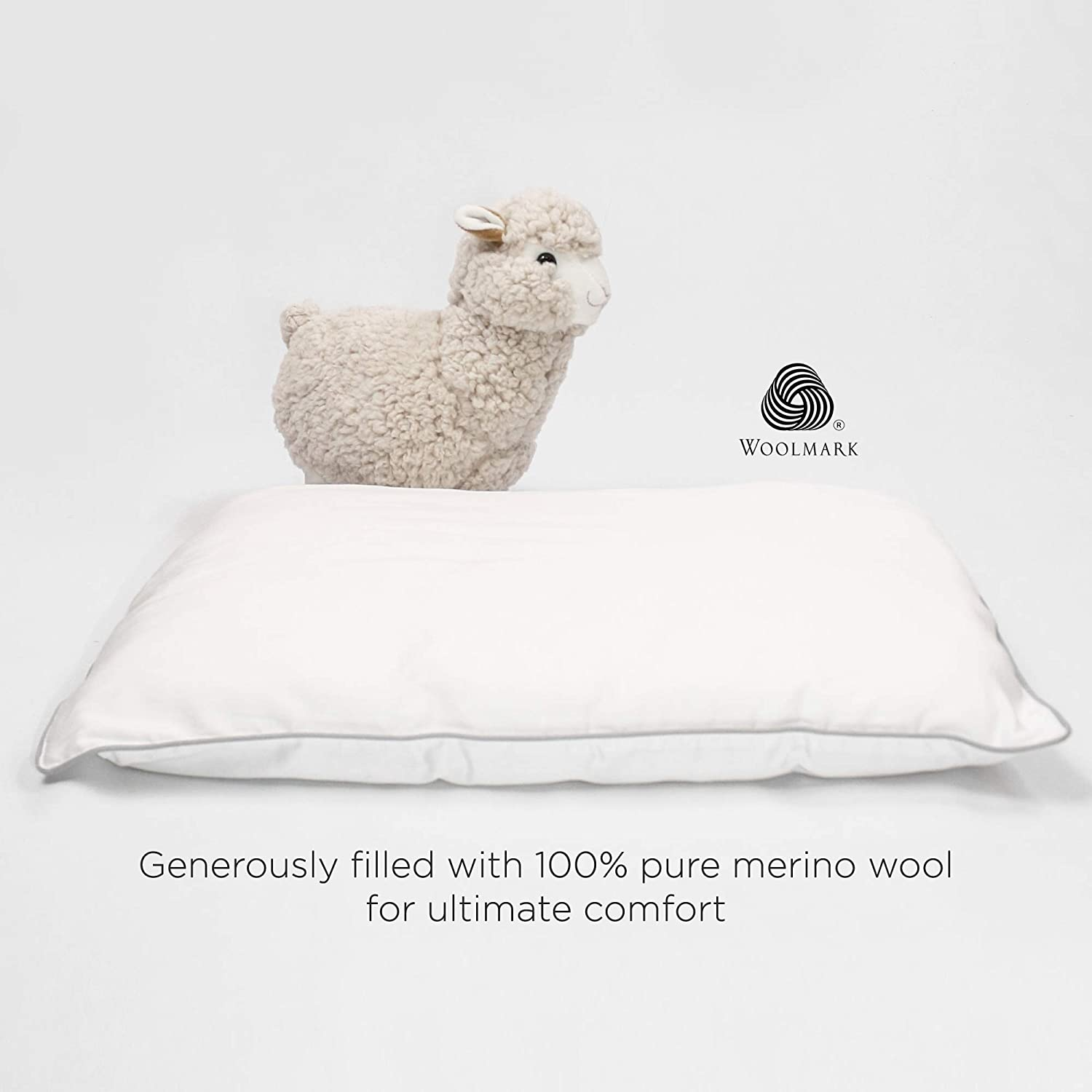 All Natural Kids Pillow Oeko TEX 100 Certified 14x19 Wool Toddler Pillow Machine Washable