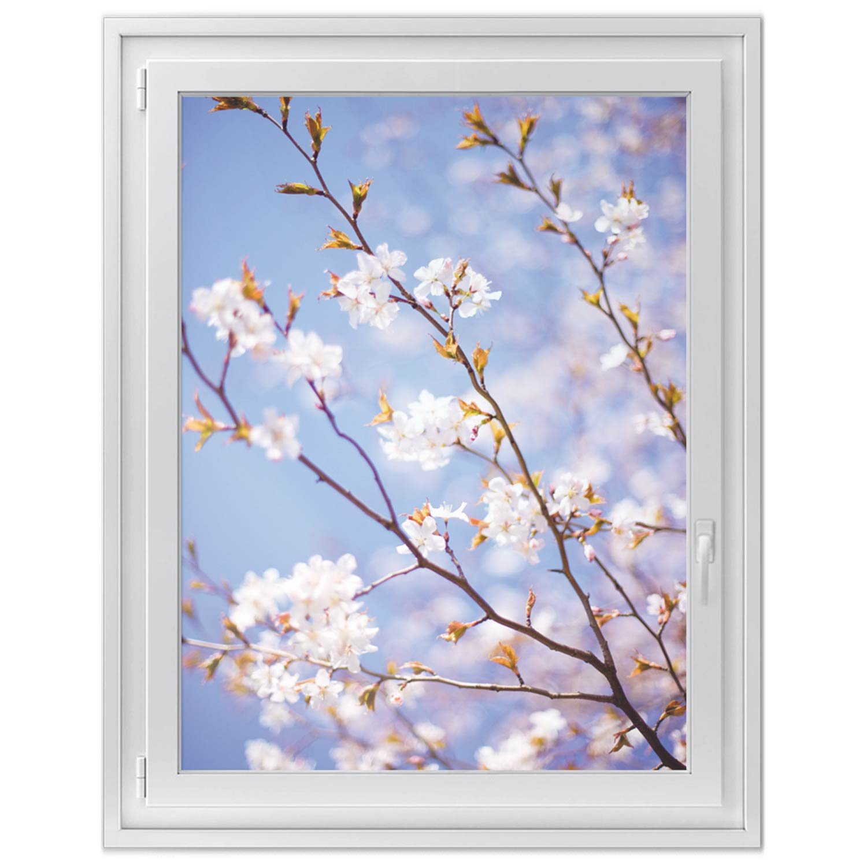 Glasdekorfolie - Fensterbild   Hochwertige Fensterfolie für Küche und Bad   Fensterdeko für Wohnzimmer und Schlafzimmer   Glasfolie Made in Germany   Fensterfolie 90 x 120 cm - Motiv Apple Blossoms