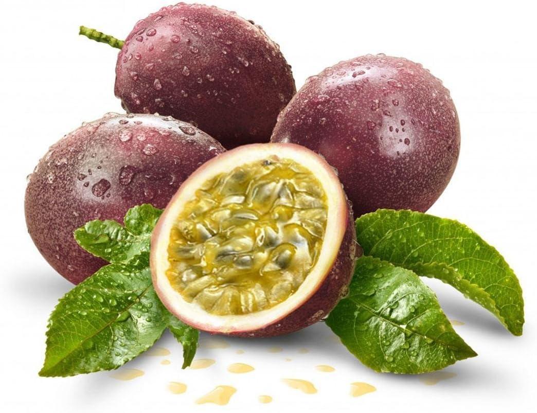 Beautytalk Seeds Farm 20 Pieces Passion Fruit Seeds Organic Fruit Seed Edible Fruit Seed Perennial Fruit Plant for Balcony