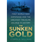 The Sunken Gold: First World War Espionage and the Greatest Treasure Salvage in History